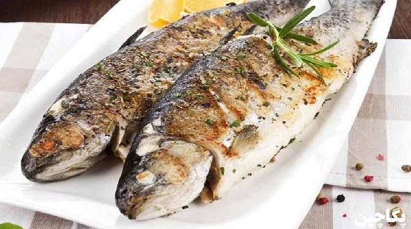 غذاهای دریایی هرمز