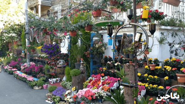 هیبلی آدا استانبول