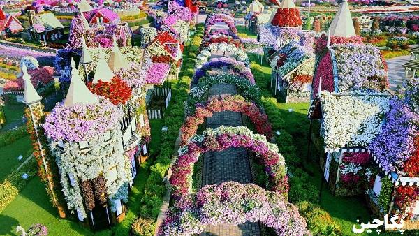 باغ گل میراکل گاردن